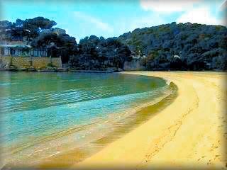 La playa de Cala Galdana es realmente un sueño, bonita, suabe, tranqula con bosque y las barcas entran por detras en el rio de cala Galdana, lo tine casi todo