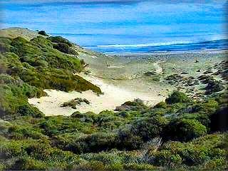 Cala Presili es la primera playa de las varias playas virgenes de este parque natural de Es Grao y  area protegida y dentro del municipio de Mao