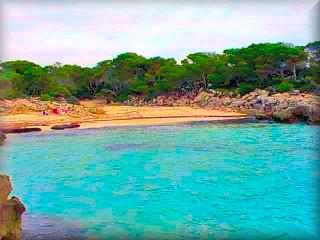 Playa virgen de Talaier, como en casi todas las playas virgenes tiene una area de bosque por detras de la playa de arenas finas y suabes, algo mas de rocas al lado izquierdo tiene bastantes visitantes en verano