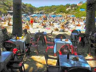 La playa de Calan Blanes es pequeña pero esta muy bien, dispone de un bar en medio de un denso y curioso palmeral justo al final de la arena de la playa