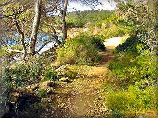 Cala Fustam y Escorxada en la costa sur del municipio de Es Migjorn Gran es el paseo por el area mas virgen de la costa menorquina