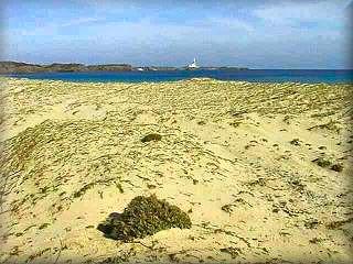 Esta area dunar protegida, es el limite entre el ,ar la playa y la albufera de Cala Morella en pleno parque natural de Es Grao sercano al Faro de Favaritx