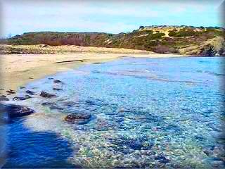 Playa de Capifort en cala Morella, una bella playa virgen de cristalinas aguas y grandes lomas de dunas, dentro del Parque de Es Grao en el area de Faro de Favaritx