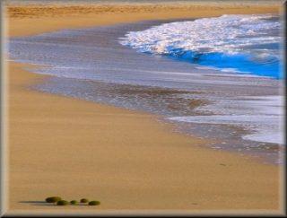 Playa de Cala Mesquida es playa de grandes dimenciones arenas finas y con una zona para los naturistas que gustan del nudismo